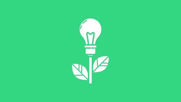 Žárovka White Light s ikonou listu izolovanou na zeleném pozadí. Eko-energetický koncept. Alternativní koncept energie. Grafická animace pohybu videa 4K
