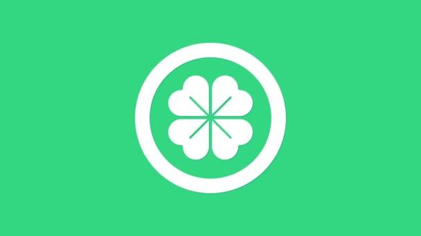 Bílá mince se čtyřmi listy jetele ikony izolované na zeleném pozadí. Šťastný den svatého Patricka. Grafická animace pohybu videa 4K
