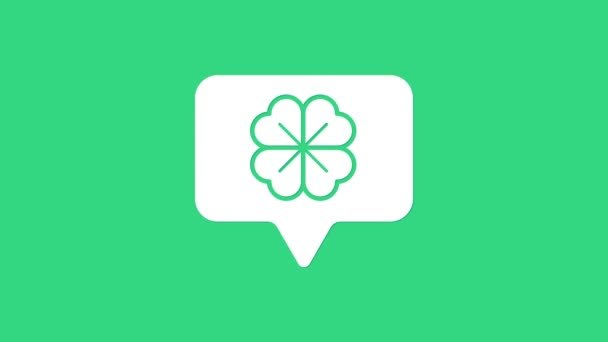 Bílý čtyřlístek jetel v bublině řeči ikony izolované na zeleném pozadí. Šťastný den svatého Patrika. Grafická animace pohybu videa 4K