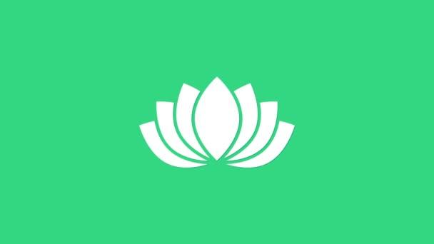 Fehér Lótusz virág ikon elszigetelt zöld háttérrel. 4K Videó mozgás grafikus animáció