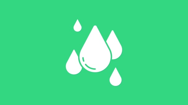 Bílá voda kapka ikona izolované na zeleném pozadí. Grafická animace pohybu videa 4K
