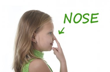 Cute little girl pointing her nose in body parts learning English words at school