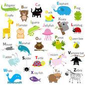 Zoo állati ábécé