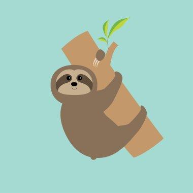 Sloth hugs tree branch