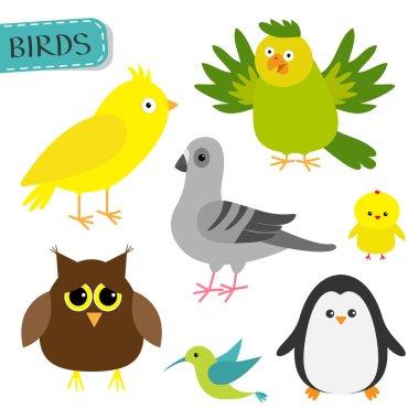 Bird set. Cute cartoon characters icon.