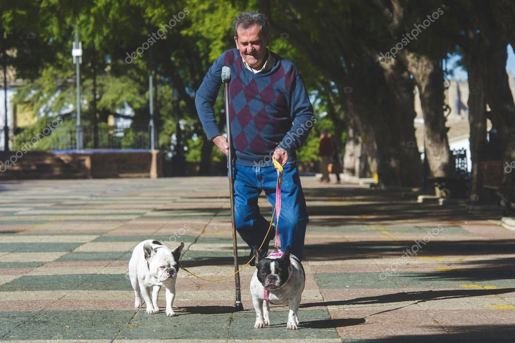 Elderly man walking his dogs — Stock Photo © kiko_jimenez