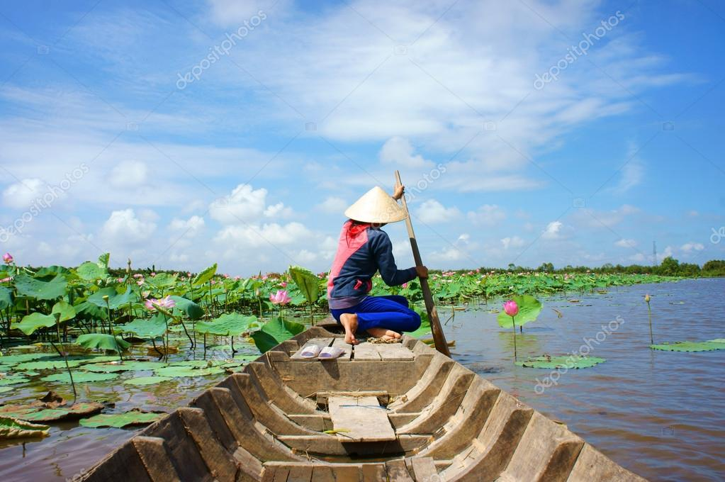 Vietnamese village, row boat, lotus flower, lotus pond