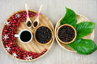 Collect of cafe, bean, cup of coffee, leaf, flower