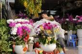 Tet v Ho Či Minově městě, květinový trh