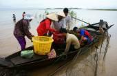 Asiatische Fischer, Tri ein See, Fluss-Fisch