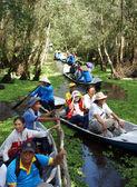 Mekong Delta, Tra Su indigo forest, ekoturistika