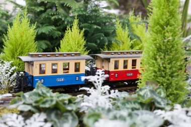 Toy train surrounded by Christmas flowers