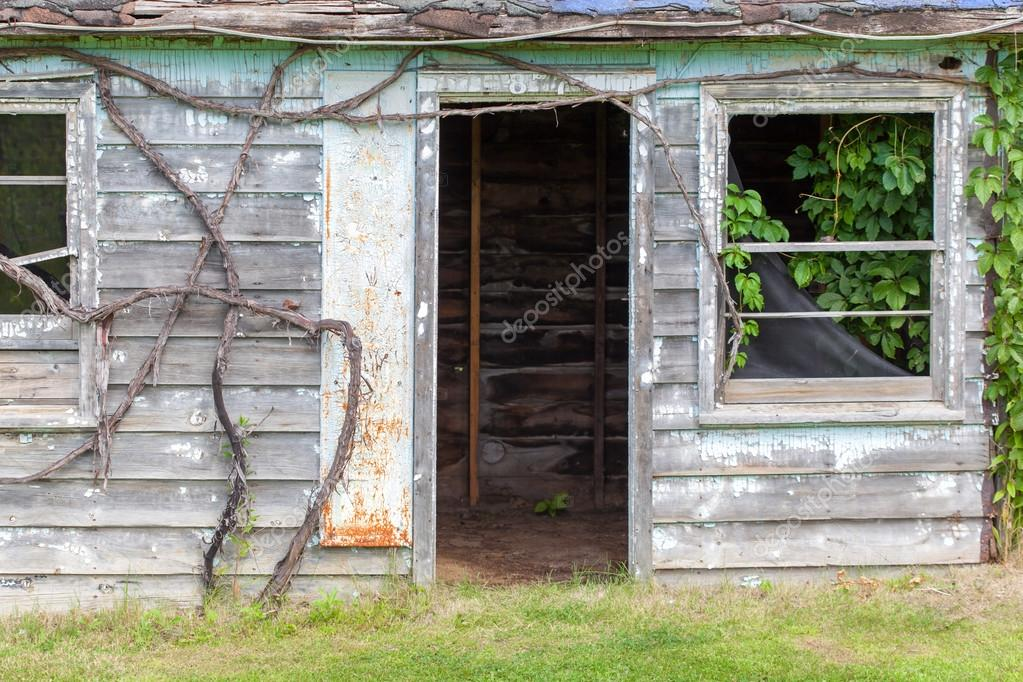 plantes plantes grimpantes escalade sur mur ruin. Black Bedroom Furniture Sets. Home Design Ideas