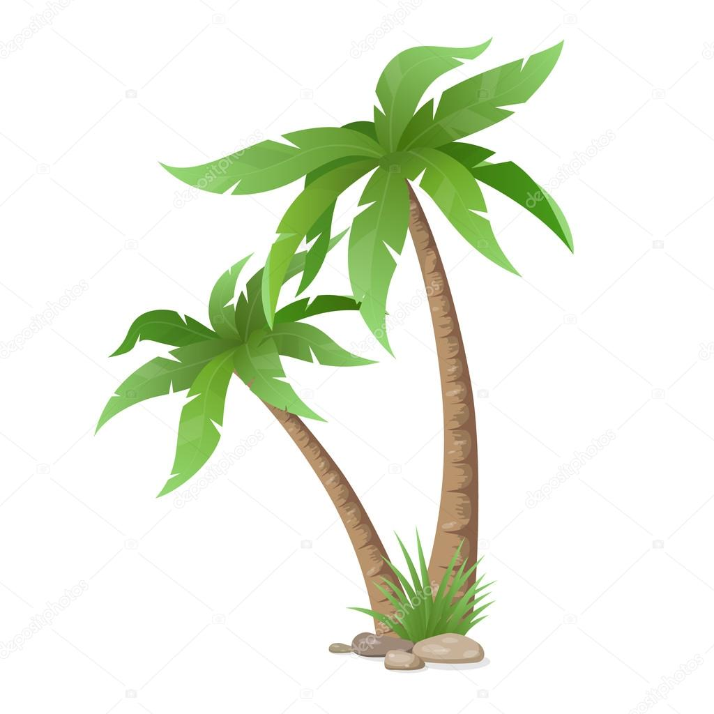Two Palms Tree Isolated Stock Vector C Belikovand 117459876
