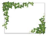 Fotografia foglio di carta decorato edera