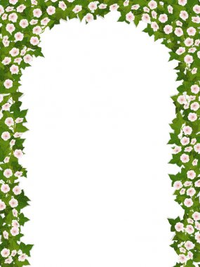 ivy arch with flower