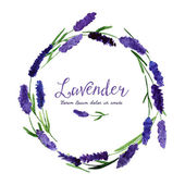 Vector greeting card with watercolor lavender.