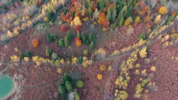 Aerial photography of travel in the autumn Carpathians