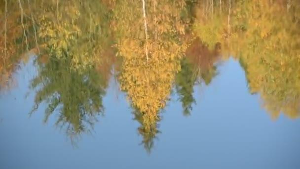 Reflexe podzimního lesa v horském jezeře