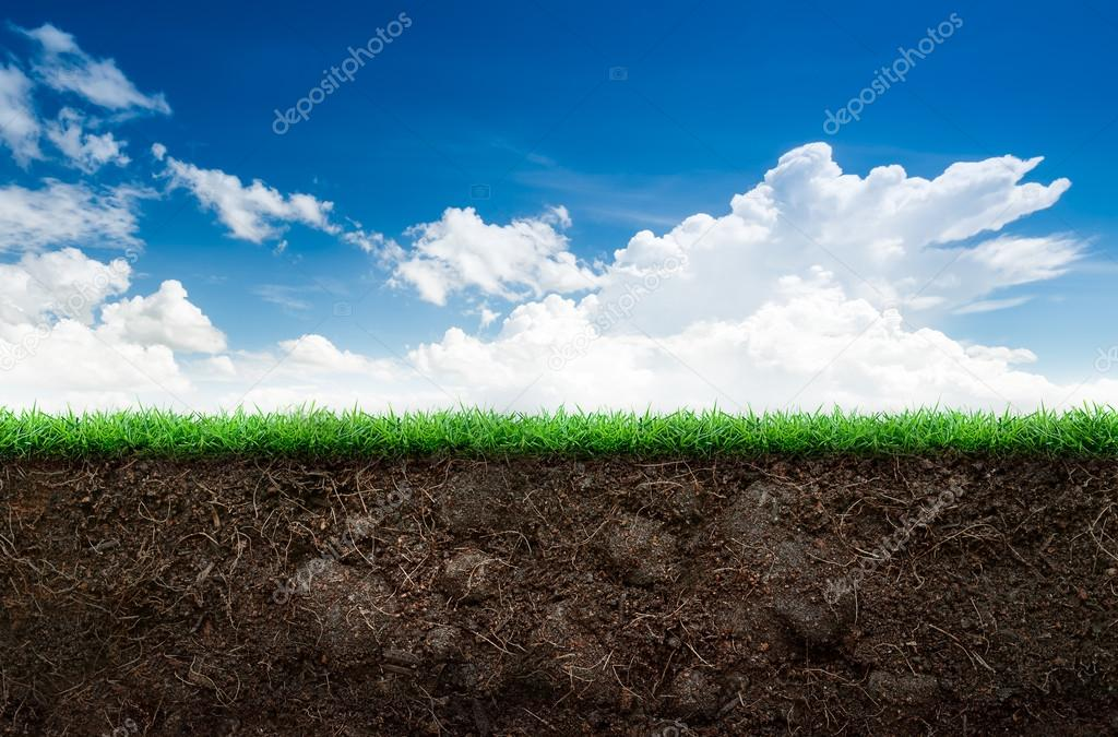 Soil and grass in blue sky