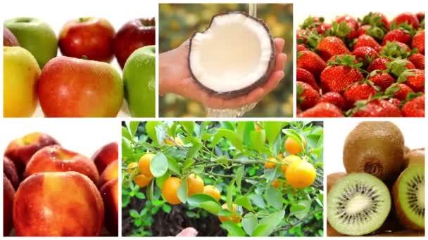 montáž včetně rozmanité ovoce a ovocné stromy