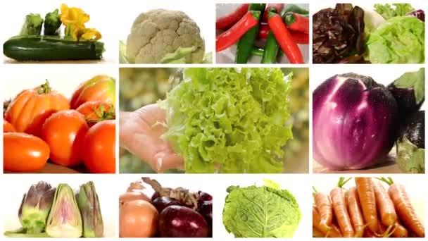 különféle zöldségek montázs