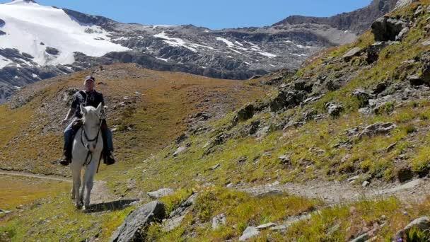 Alpská krajina s jezdec