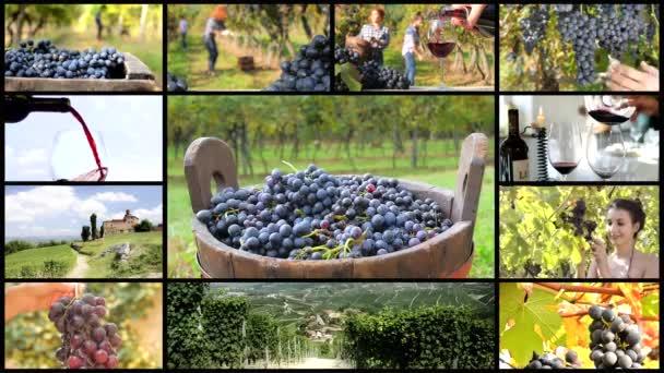 země vína fotomontáž