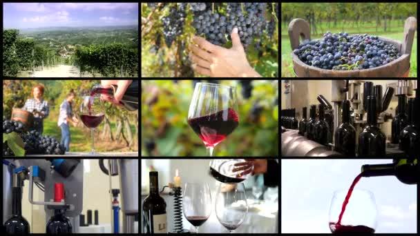 Vinařství sestřih