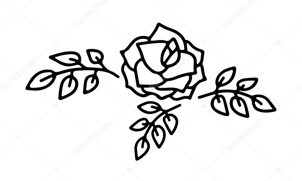 Hand drawn rose flower with leaves in doodle style isolated on white background icon