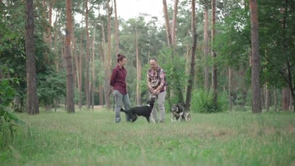 Extrémní široký záběr bezstarostné rodiny hrající si se psy v lese nebo parku. Portrét usmívajícího se bělošského manžela a manželky s čistokrevnými domácími mazlíčky venku. Koncept životního stylu.