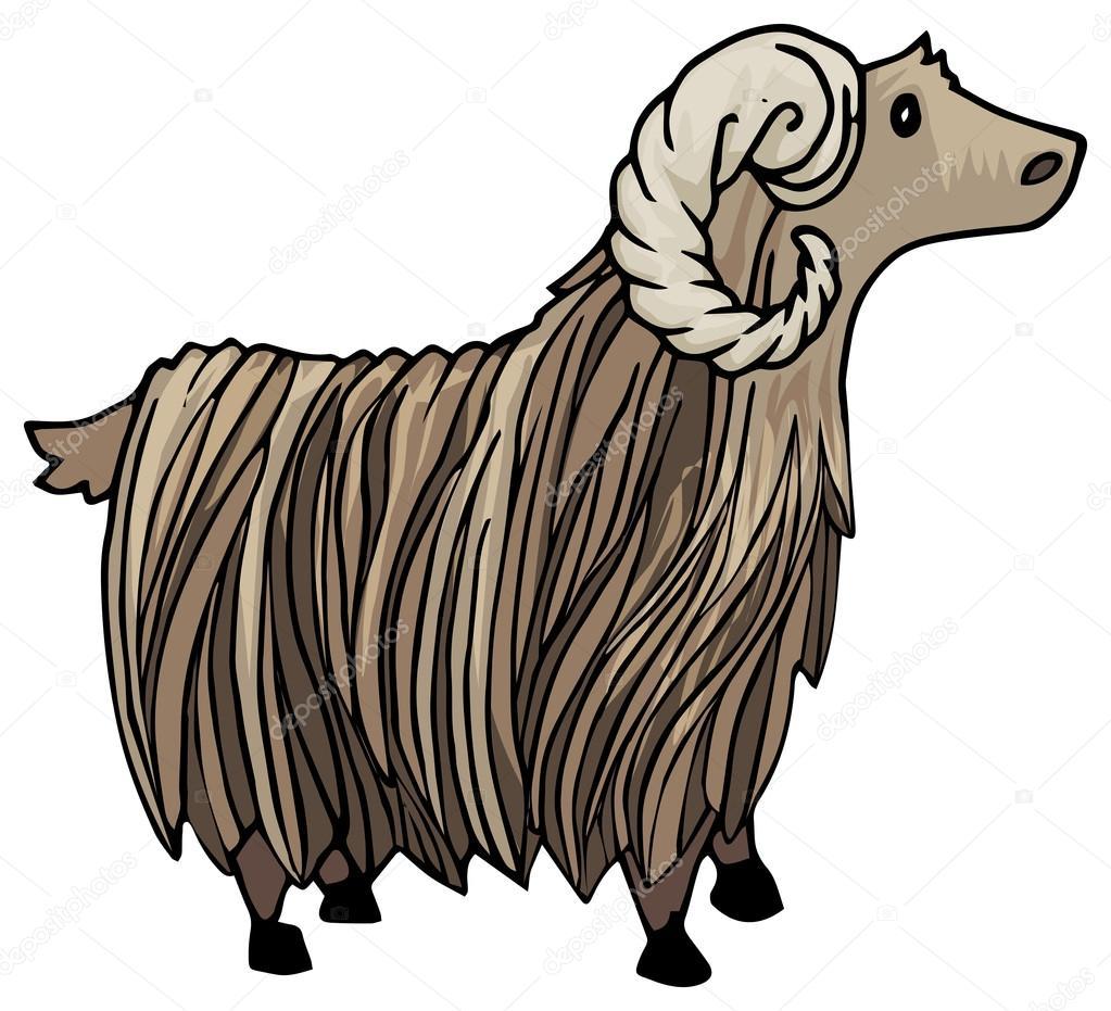 Mountain Ram