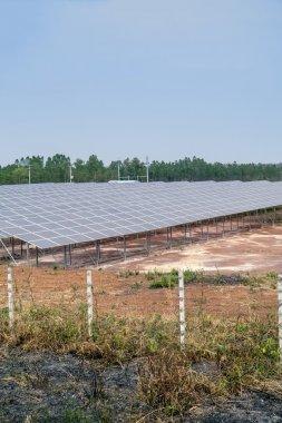 Solar cell board