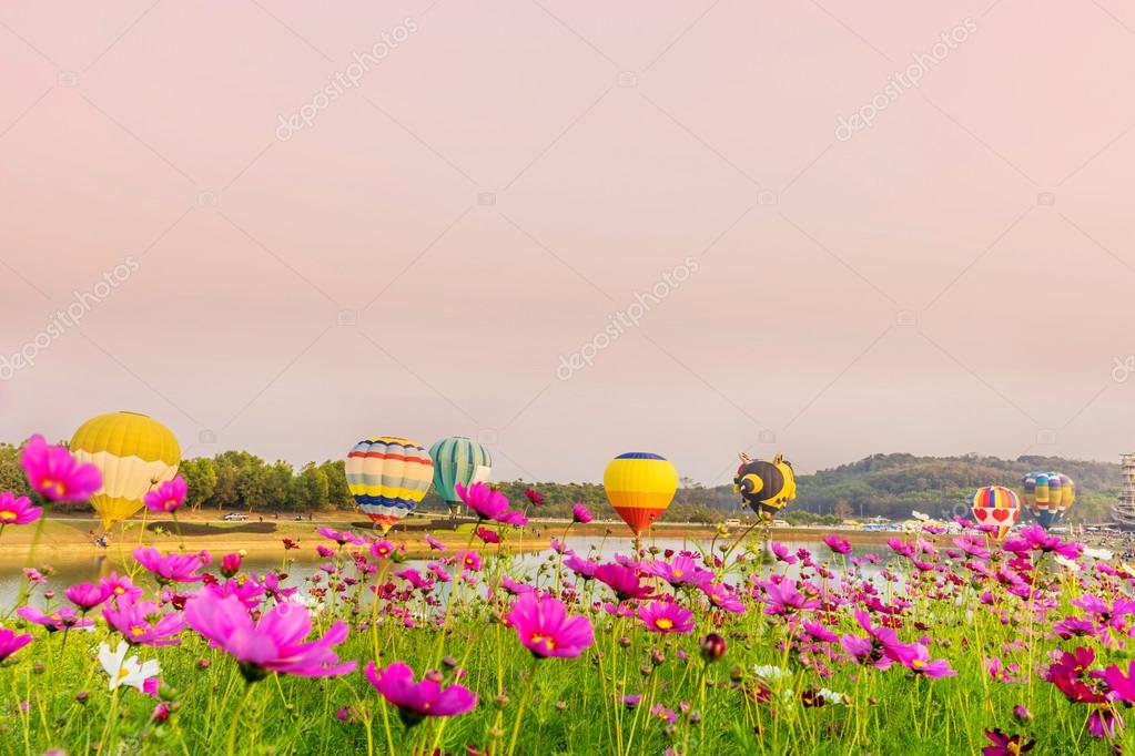 Фотообои Colorful hot-air balloons flying over cosmos flowers at sunset
