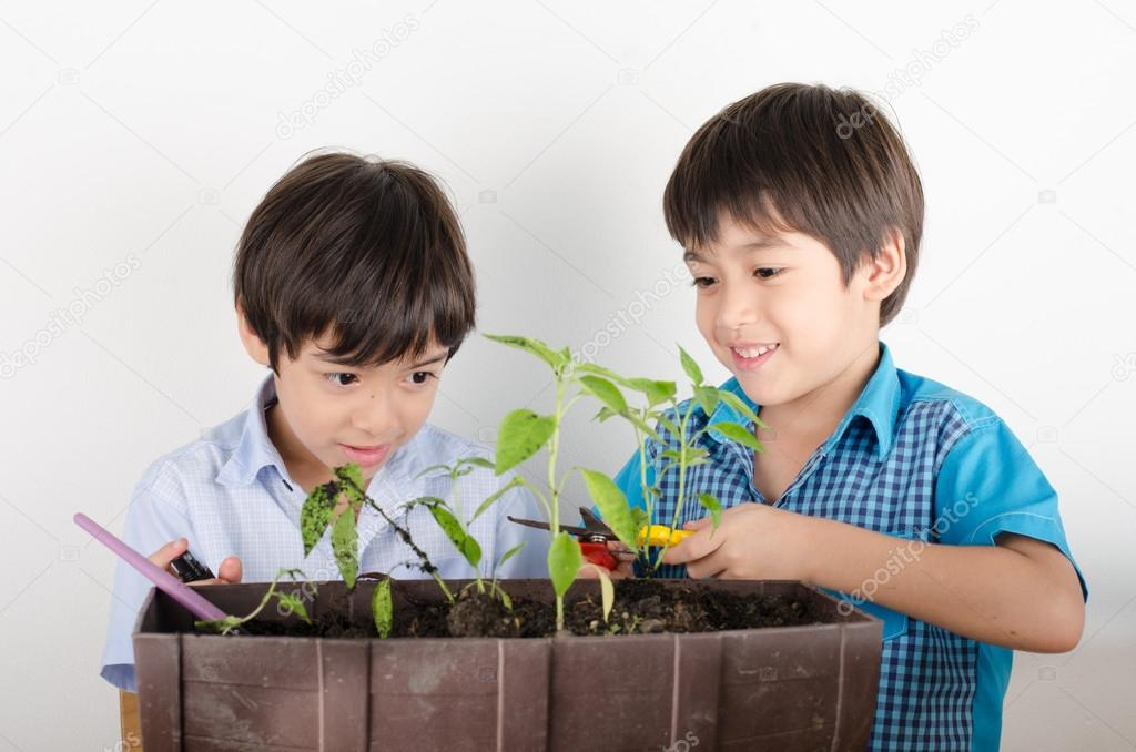 Little sibbling boy working with gardening together