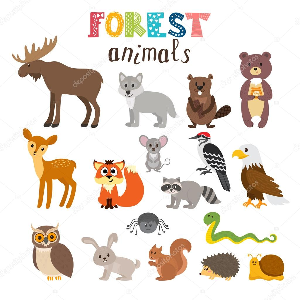 Pictures Cute Forest Animals Set Of Cute Forest Animals In