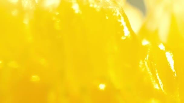 finom narancssárga cellulóz forgó Vértes