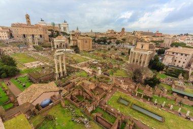 Incredible ruins of the Roman Forum