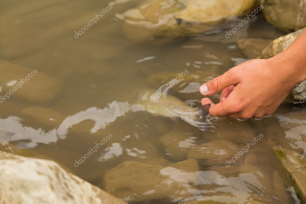 Fishing in the mountain river in summer