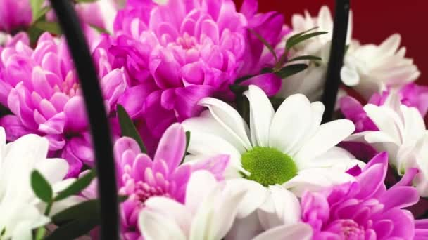 Krásná kytice květin zblízka prezentace