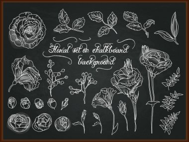 Floral chalk drawing on blackboard. Set of floral elements to create compositions. Vector illustration. stock vector