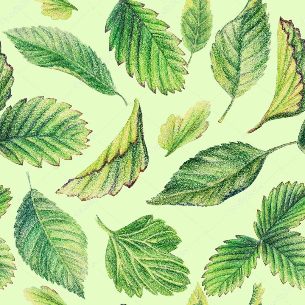 Seamless pattern with leaves. Drawing with colored pencils. — Stock ...