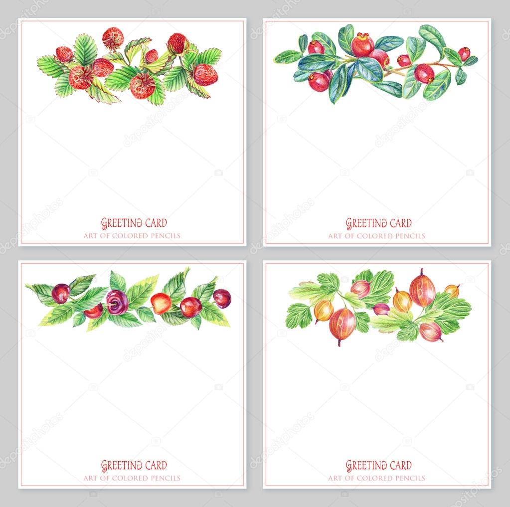 Set with floral and berries  greeting cards.
