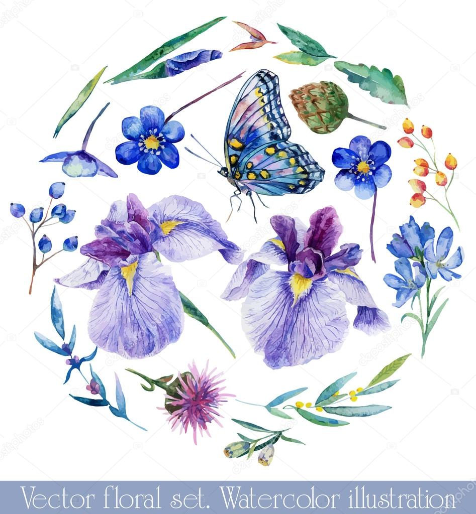 Vector set of different blue, lilac flowers for design.