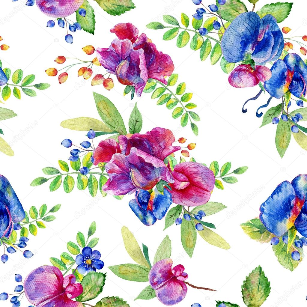 Seamless pattern with pink, blue Sweet pea, Lathyrus odoratus, l