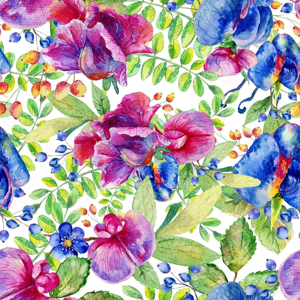 Seamless pattern with pink, blue Sweet pea, Lathyrus odoratus, l