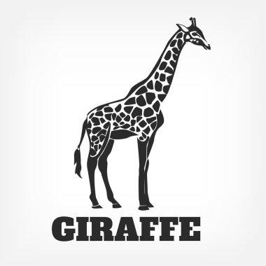 Vector giraffe black illustration