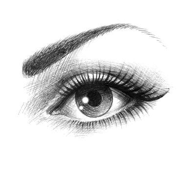 Beautiful female eye stock vector