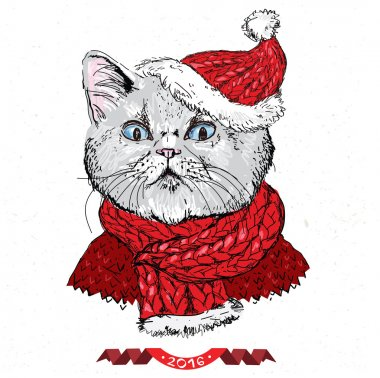 hand drawn vector of cat with christmas
