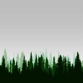 Panorama z divokých jehličnatého lesa